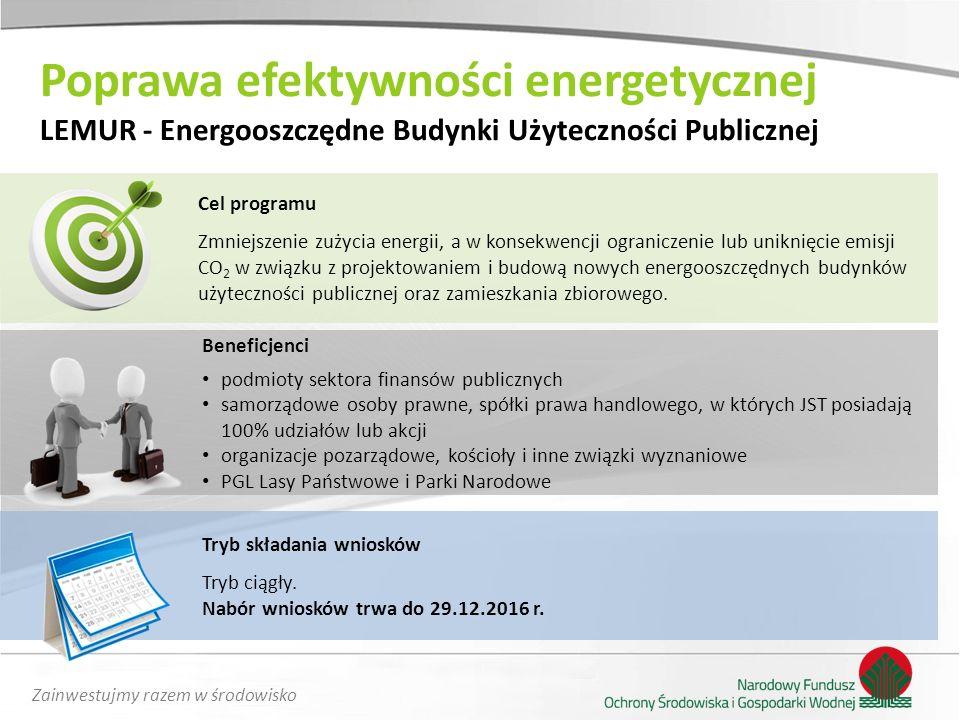 Zainwestujmy razem w środowisko Poprawa efektywności energetycznej LEMUR - Energooszczędne Budynki Użyteczności Publicznej Cel programu Zmniejszenie z