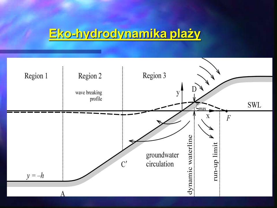 Eko-hydrodynamika plaży