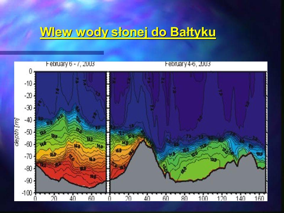 Wlew wody słonej do Bałtyku