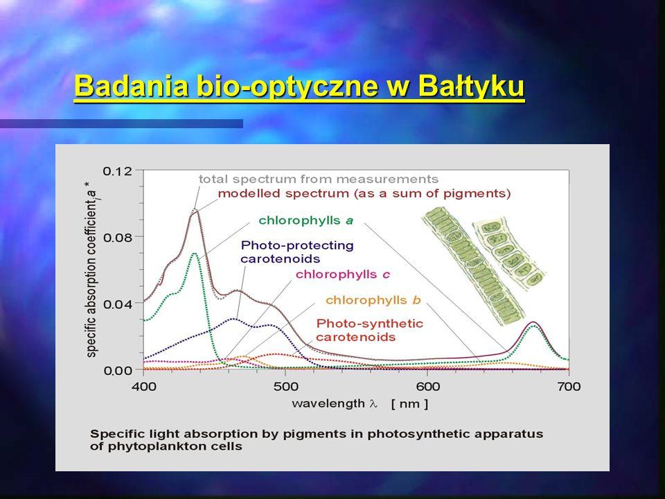 Badania bio-optyczne w Bałtyku