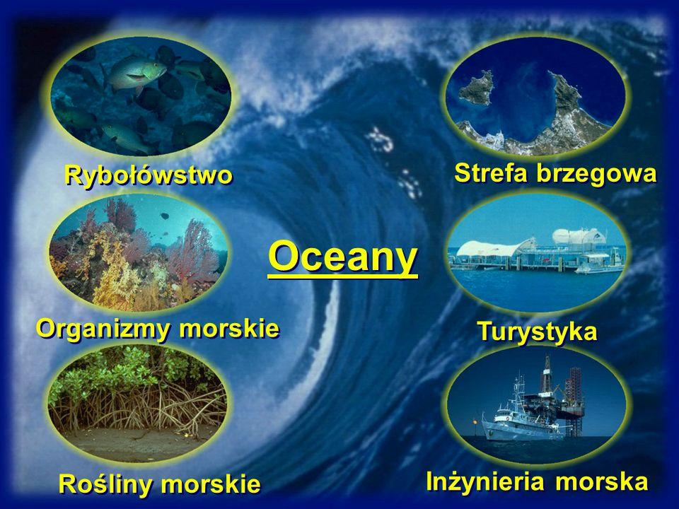 Oceany Rybołówstwo Organizmy morskie Rośliny morskie Strefa brzegowa Turystyka Inżynieria morska
