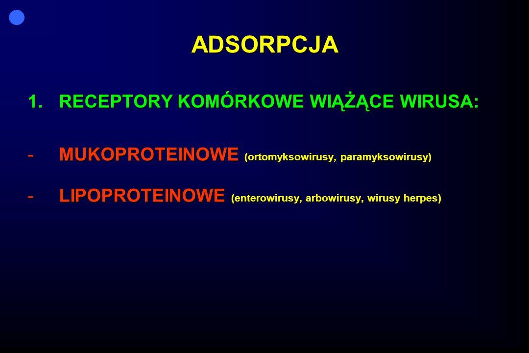 ADSORPCJA 1.R ECEPTORY KOMÓRKOWE WIĄŻĄCE WIRUSA: -M-M-M-MUKOPROTEINOWE (ortomyksowirusy, paramyksowirusy) -L-L-L-LIPOPROTEINOWE (enterowirusy, arbowir