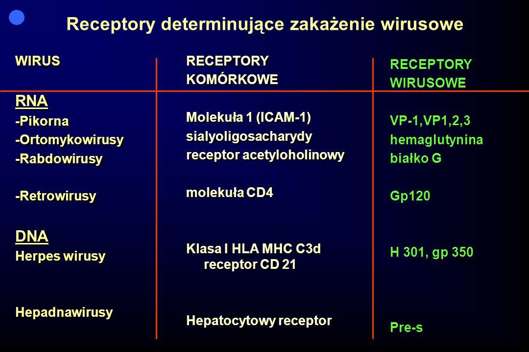 Receptory determinujące zakażenie wirusowe WIRUS RNA -Pikorna -Ortomykowirusy -Rabdowirusy -Retrowirusy DNA Herpes wirusy Hepadnawirusy WIRUS RNA -Pik