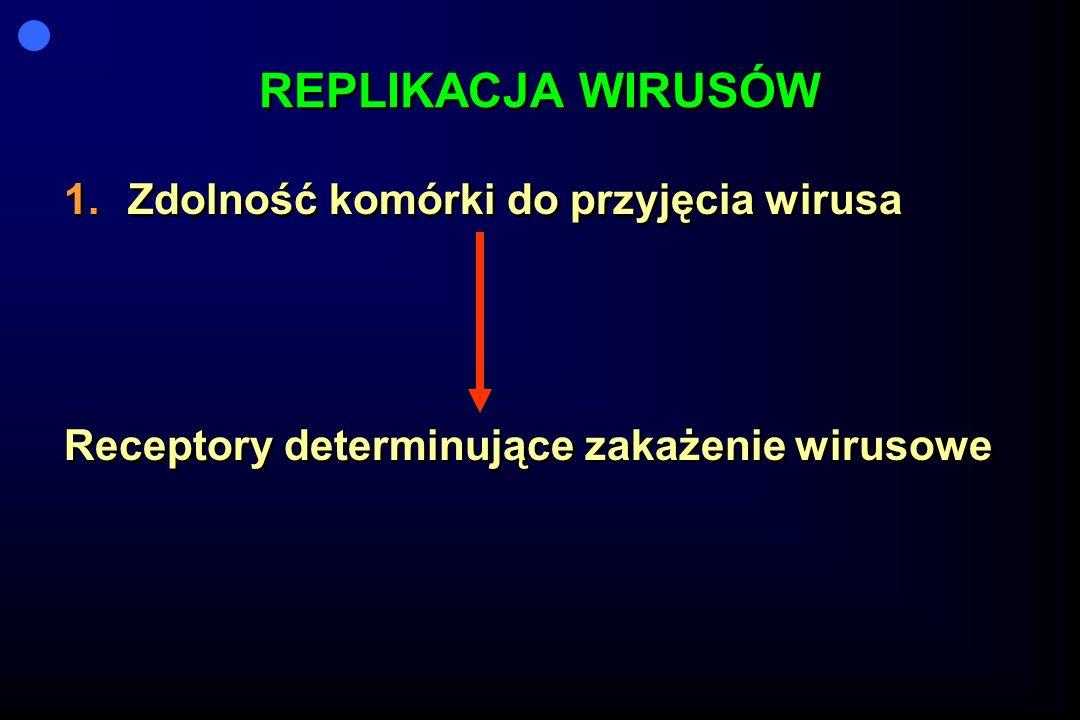 REPLIKACJA WIRUSÓW 1.Zdolność komórki do przyjęcia wirusa Receptory determinujące zakażenie wirusowe 1.Zdolność komórki do przyjęcia wirusa Receptory determinujące zakażenie wirusowe