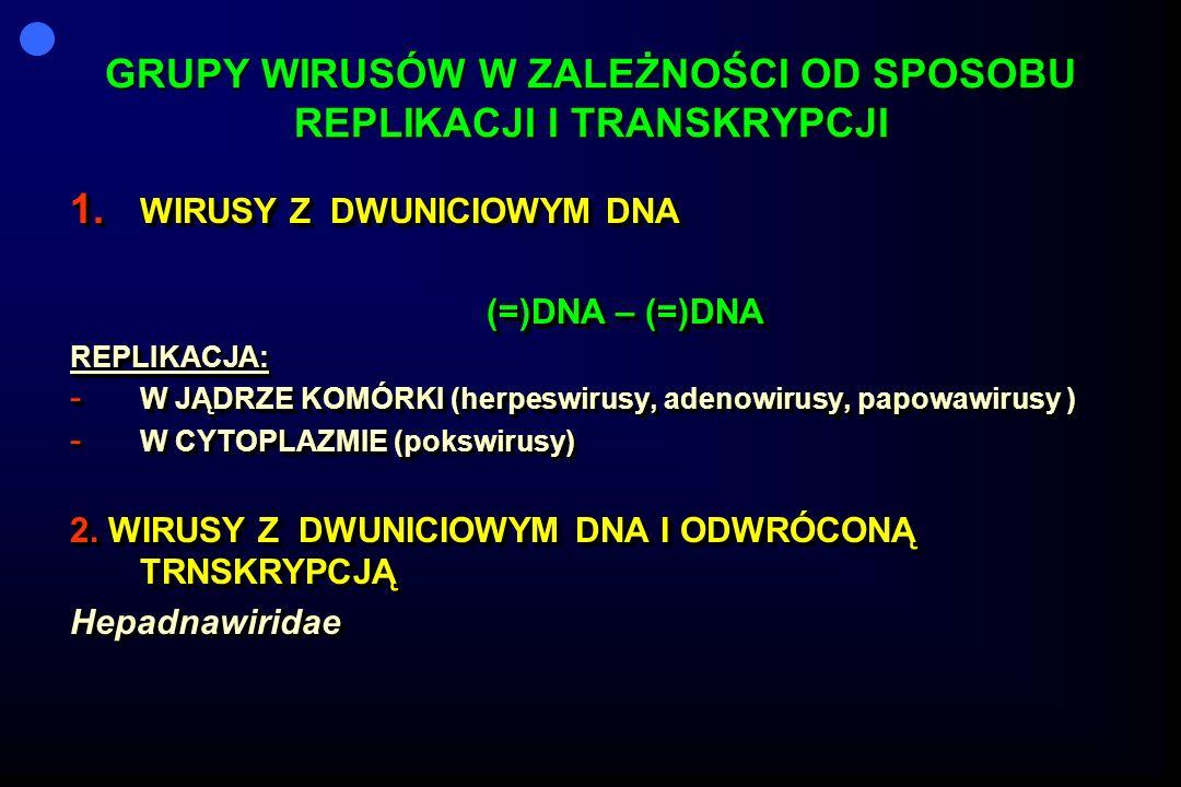 GRUPY WIRUSÓW W ZALEŻNOŚCI OD SPOSOBU REPLIKACJI I TRANSKRYPCJI 1. WIRUSY Z DWUNICIOWYM DNA (=)DNA – (=)DNA (=)DNA – (=)DNAREPLIKACJA: - W JĄDRZE KOMÓ