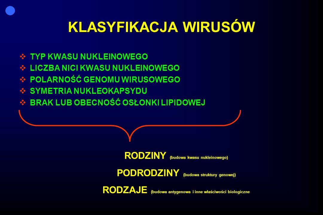 Receptory determinujące zakażenie wirusowe WIRUS RNA -Pikorna -Ortomykowirusy -Rabdowirusy -Retrowirusy DNA Herpes wirusy Hepadnawirusy WIRUS RNA -Pikorna -Ortomykowirusy -Rabdowirusy -Retrowirusy DNA Herpes wirusy Hepadnawirusy RECEPTORY KOMÓRKOWE Molekuła 1 (ICAM-1) sialyoligosacharydy receptor acetyloholinowy molekuła CD4 Klasa I HLA MHC C3d receptor CD 21 Hepatocytowy receptor RECEPTORY KOMÓRKOWE Molekuła 1 (ICAM-1) sialyoligosacharydy receptor acetyloholinowy molekuła CD4 Klasa I HLA MHC C3d receptor CD 21 Hepatocytowy receptor RECEPTORY WIRUSOWE VP-1,VP1,2,3 hemaglutynina białko G Gp120 H 301, gp 350 Pre-s