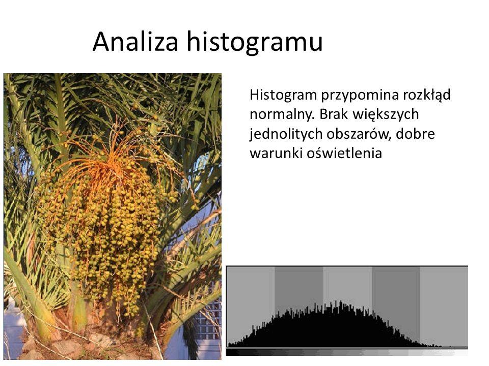 Analiza histogramu Histogram przypomina rozkłąd normalny. Brak większych jednolitych obszarów, dobre warunki oświetlenia