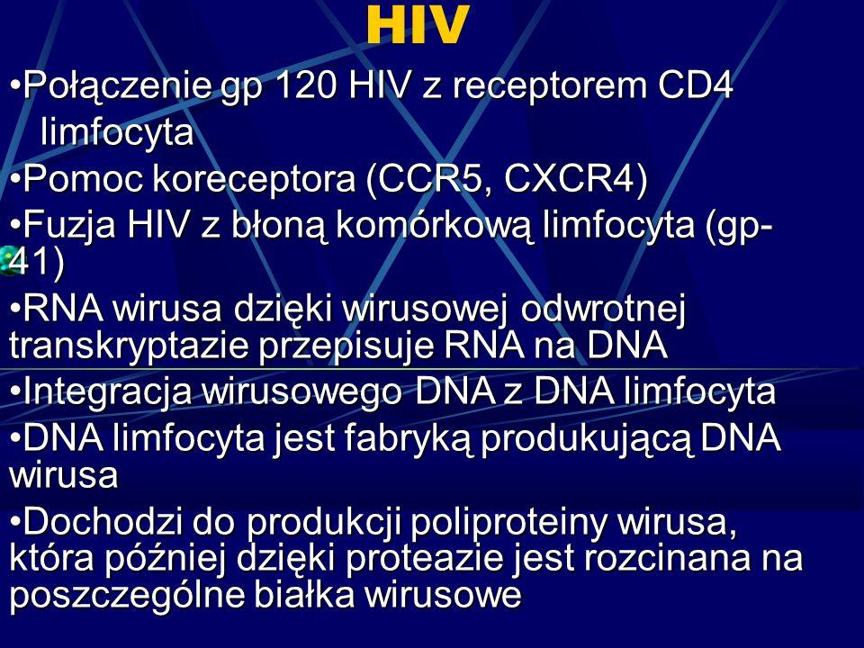 HIV Połączenie gp 120 HIV z receptorem CD4Połączenie gp 120 HIV z receptorem CD4 limfocyta limfocyta Pomoc koreceptora (CCR5, CXCR4)Pomoc koreceptora (CCR5, CXCR4) Fuzja HIV z błoną komórkową limfocyta (gp- 41)Fuzja HIV z błoną komórkową limfocyta (gp- 41) RNA wirusa dzięki wirusowej odwrotnej transkryptazie przepisuje RNA na DNARNA wirusa dzięki wirusowej odwrotnej transkryptazie przepisuje RNA na DNA Integracja wirusowego DNA z DNA limfocytaIntegracja wirusowego DNA z DNA limfocyta DNA limfocyta jest fabryką produkującą DNA wirusaDNA limfocyta jest fabryką produkującą DNA wirusa Dochodzi do produkcji poliproteiny wirusa, która później dzięki proteazie jest rozcinana na poszczególne białka wirusoweDochodzi do produkcji poliproteiny wirusa, która później dzięki proteazie jest rozcinana na poszczególne białka wirusowe