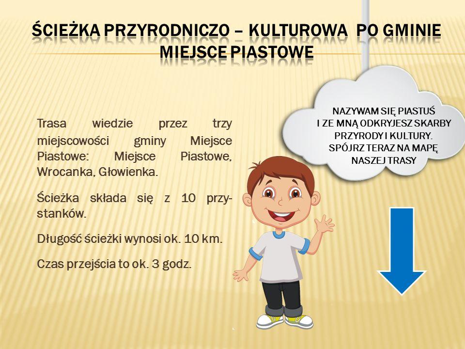Trasa wiedzie przez trzy miejscowości gminy Miejsce Piastowe: Miejsce Piastowe, Wrocanka, Głowienka. Ścieżka składa się z 10 przy- stanków. Długość śc