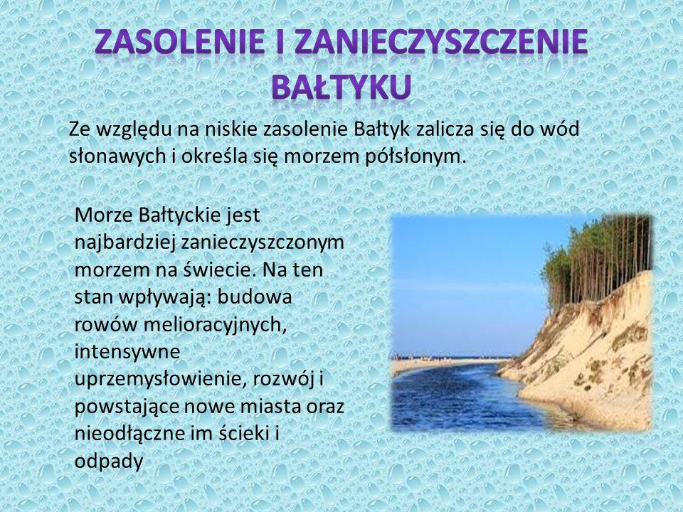 Ze względu na niskie zasolenie Bałtyk zalicza się do wód słonawych i określa się morzem półsłonym.