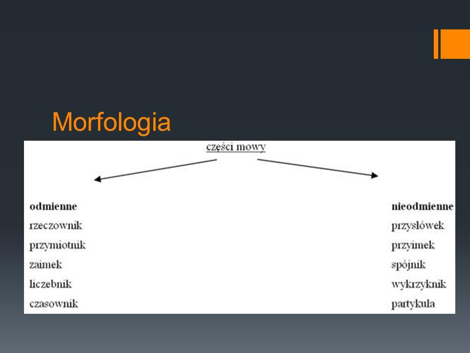 Morfologia ►Wyraz, czyli leksem: