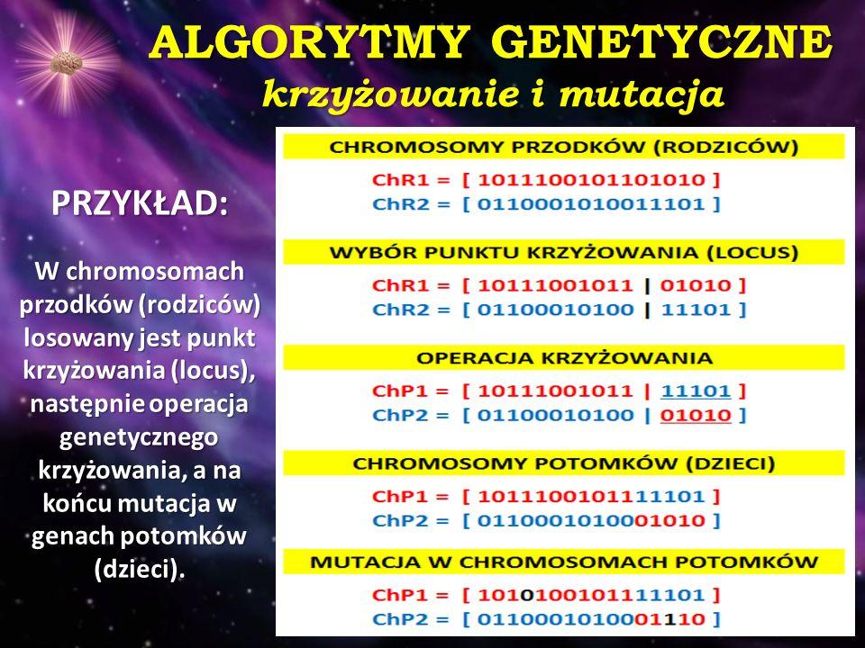 ALGORYTMY GENETYCZNE krzyżowanie i mutacja PRZYKŁAD: W chromosomach przodków (rodziców) losowany jest punkt krzyżowania (locus), następnie operacja ge