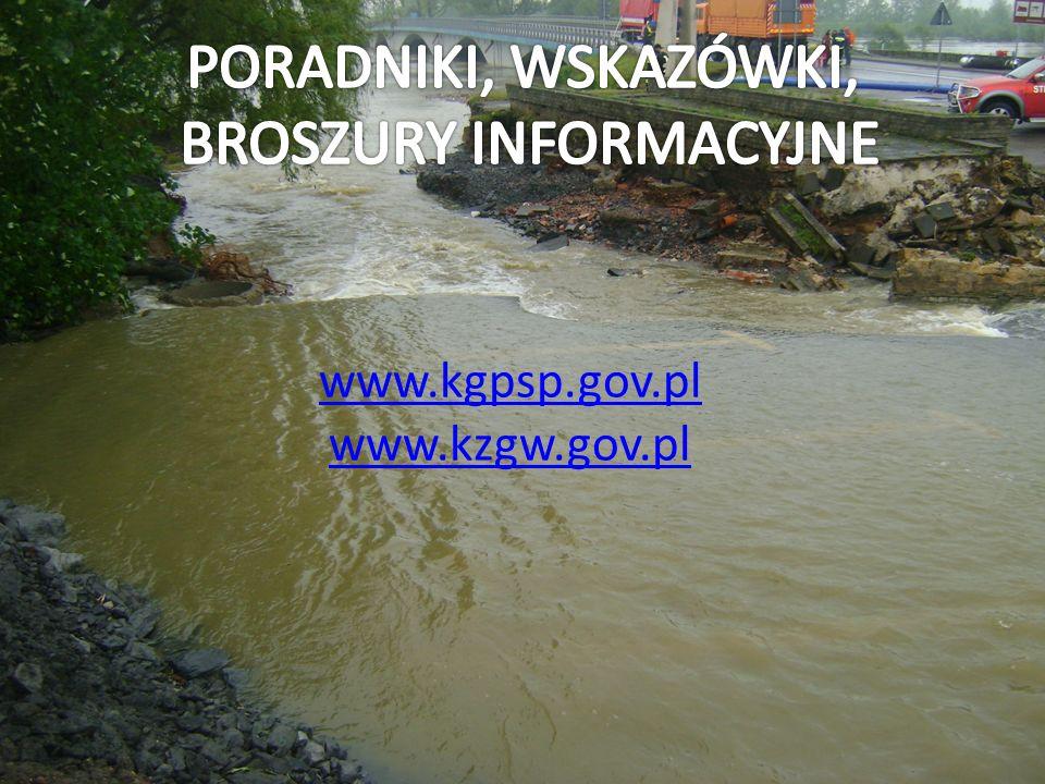 www.kgpsp.gov.pl www.kzgw.gov.pl