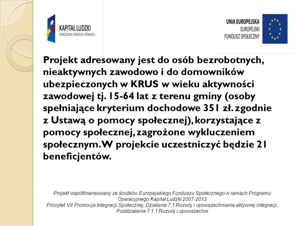 Cel główny projektu: Aktywizacja społeczno-zawodowa w okresie II-XII.2010r.