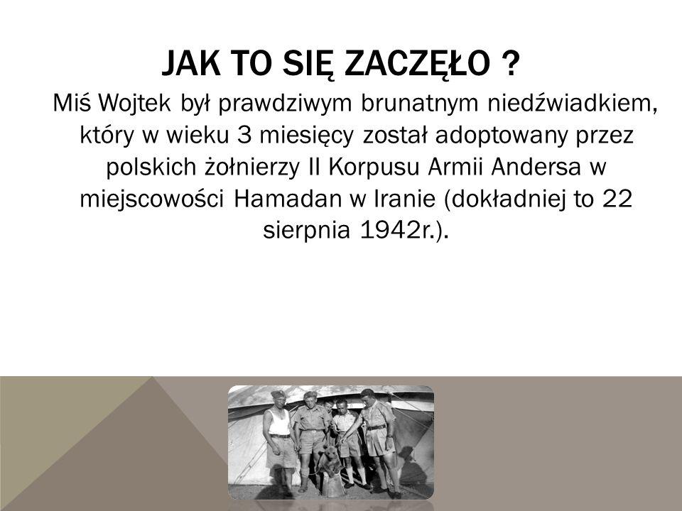 JAK TO SIĘ ZACZĘŁO ? Miś Wojtek był prawdziwym brunatnym niedźwiadkiem, który w wieku 3 miesięcy został adoptowany przez polskich żołnierzy II Korpusu