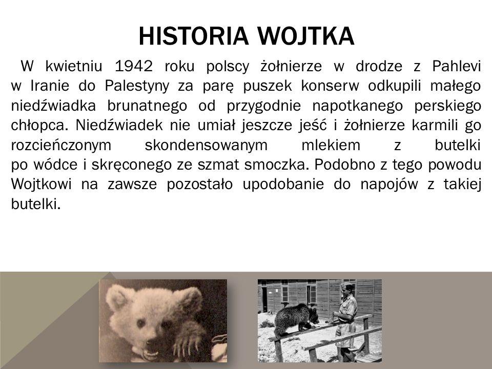 HISTORIA WOJTKA W kwietniu 1942 roku polscy żołnierze w drodze z Pahlevi w Iranie do Palestyny za parę puszek konserw odkupili małego niedźwiadka brun
