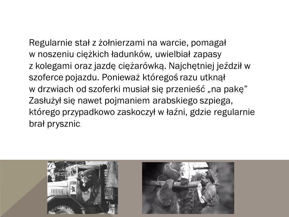 Regularnie stał z żołnierzami na warcie, pomagał w noszeniu ciężkich ładunków, uwielbiał zapasy z kolegami oraz jazdę ciężarówką. Najchętniej jeździł