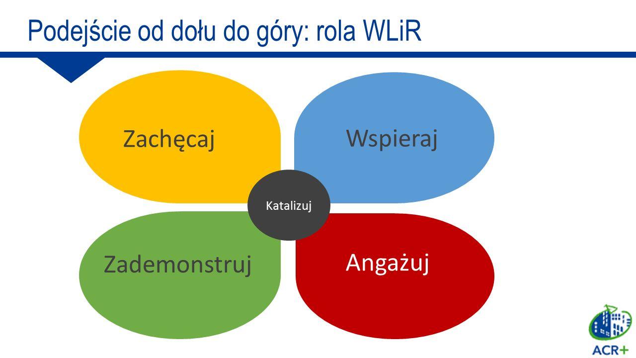 Usuń bariery dla działań Wspieraj kluby/ społeczności Buduj zdolności i własność Zapewnij miejsce / narzędzia Dostarcz wiedzy Katalizuj Wspieraj Podejście od dołu do góry: rola WLiR