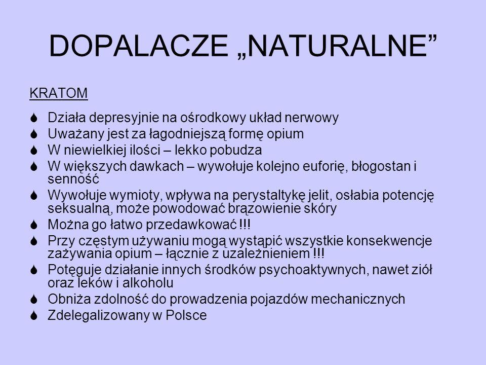 """DOPALACZE """"NATURALNE"""" KRATOM  Działa depresyjnie na ośrodkowy układ nerwowy  Uważany jest za łagodniejszą formę opium  W niewielkiej ilości – lekko"""