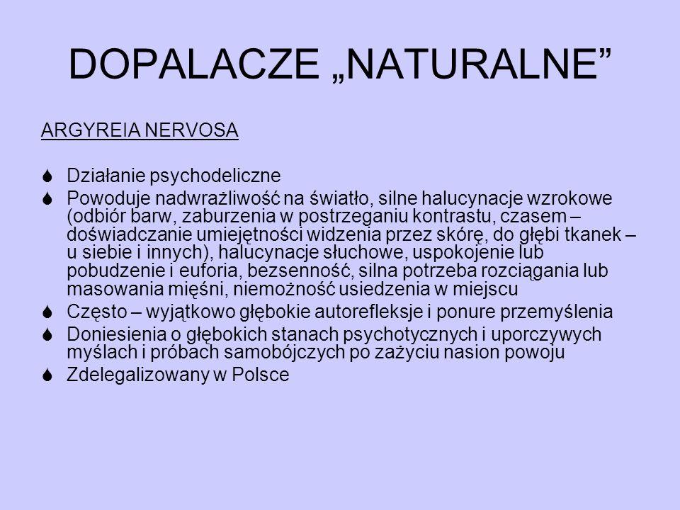 """DOPALACZE """"NATURALNE"""" ARGYREIA NERVOSA  Działanie psychodeliczne  Powoduje nadwrażliwość na światło, silne halucynacje wzrokowe (odbiór barw, zaburz"""