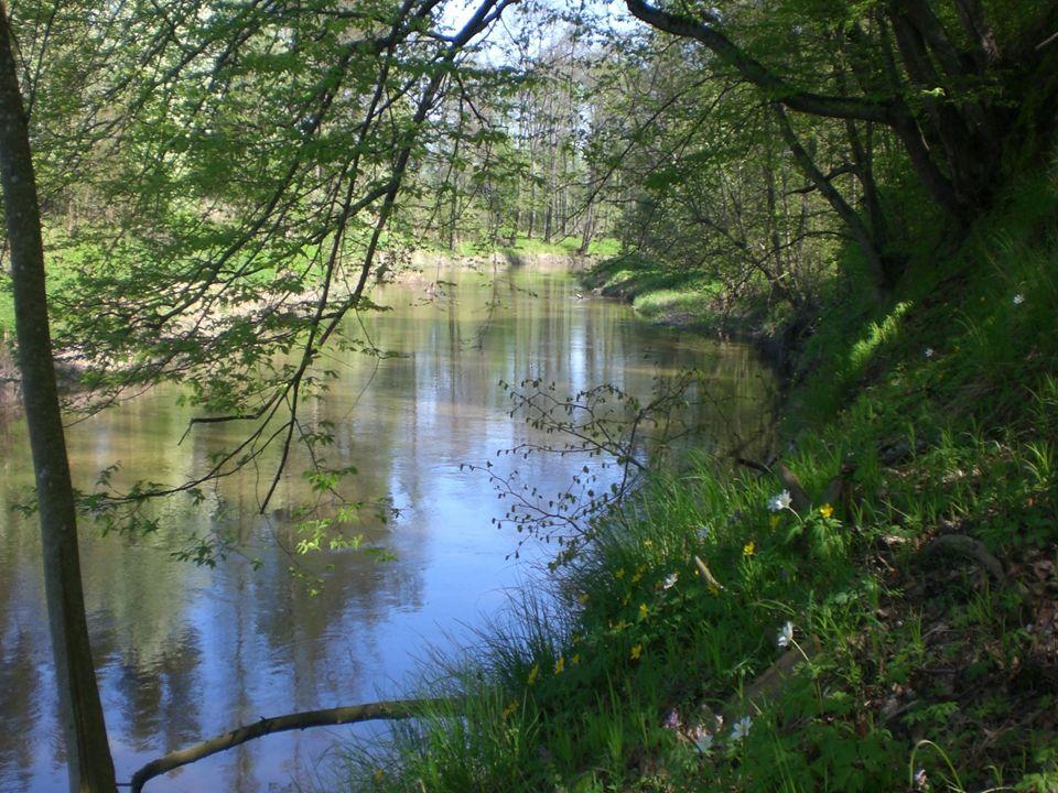 Szlak wodny Szlak wodny zachęca do uprawiania sportów wodnych.