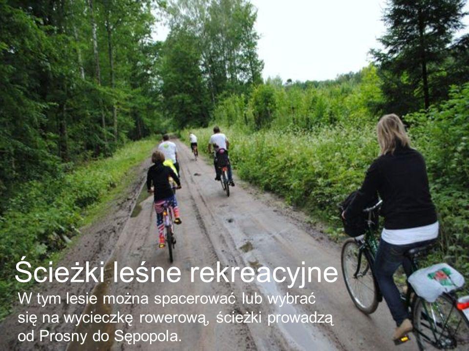 Bobrowiska Bobrowiska mają wielkie znaczenie edukacyjne.