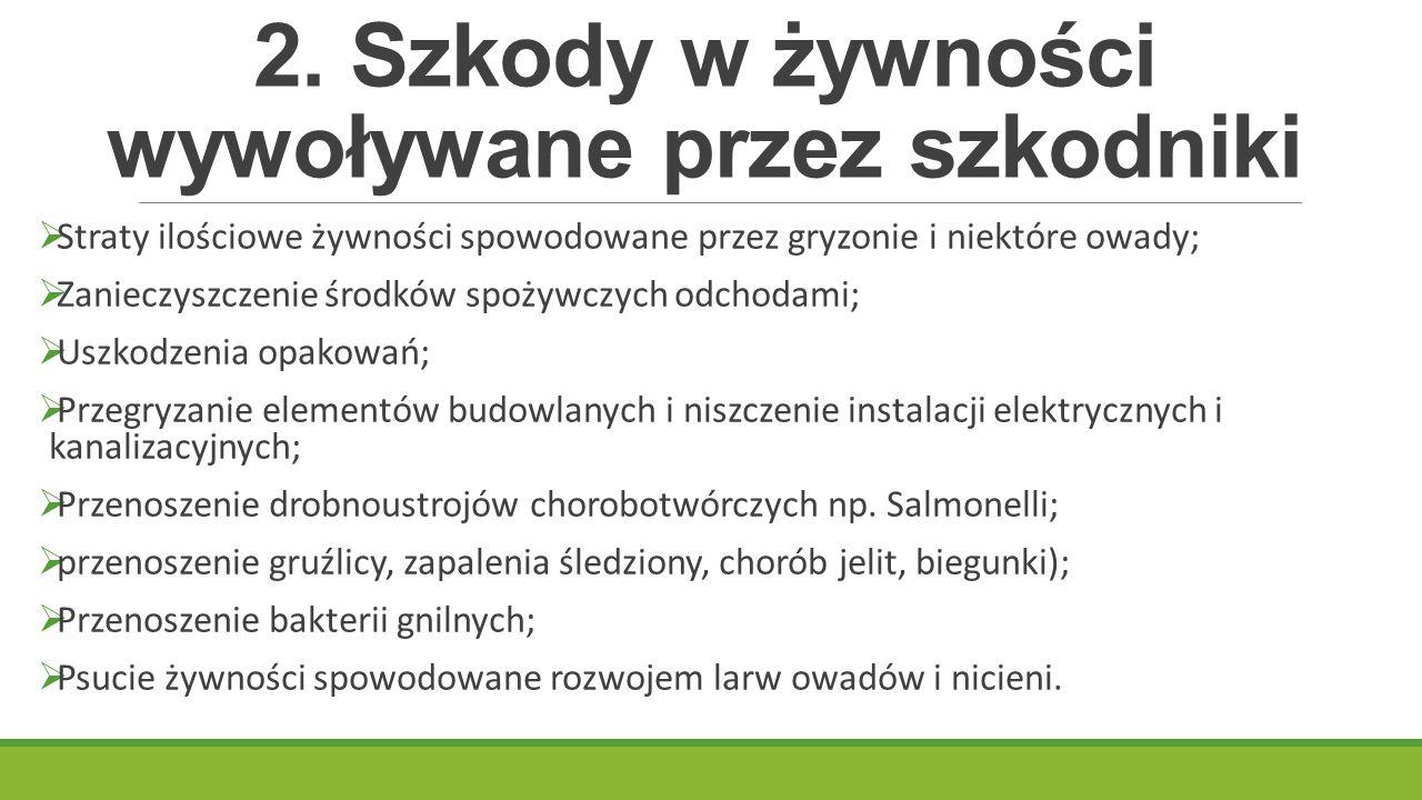 2. Szkody w żywności wywoływane przez szkodniki  Straty ilościowe żywności spowodowane przez gryzonie i niektóre owady;  Zanieczyszczenie środków sp