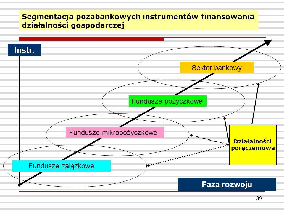 39 Segmentacja pozabankowych instrumentów finansowania działalności gospodarczej Instr.