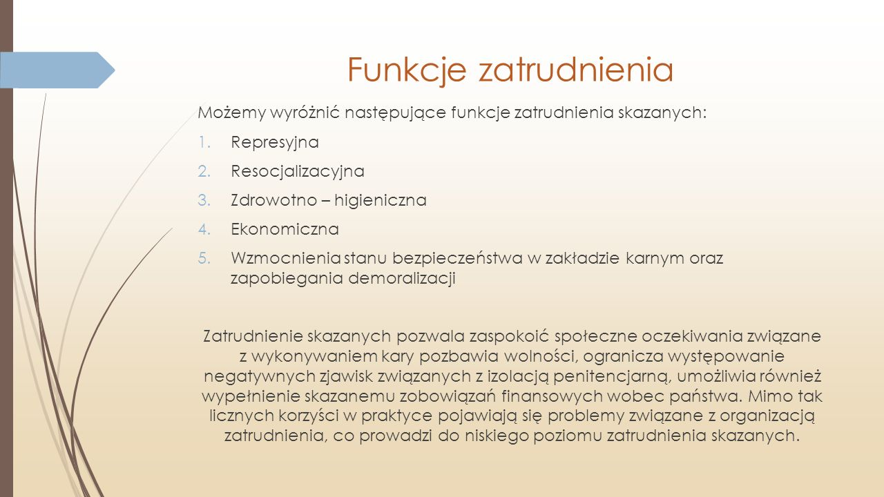 Funkcje zatrudnienia Możemy wyróżnić następujące funkcje zatrudnienia skazanych: 1.Represyjna 2.Resocjalizacyjna 3.Zdrowotno – higieniczna 4.Ekonomicz