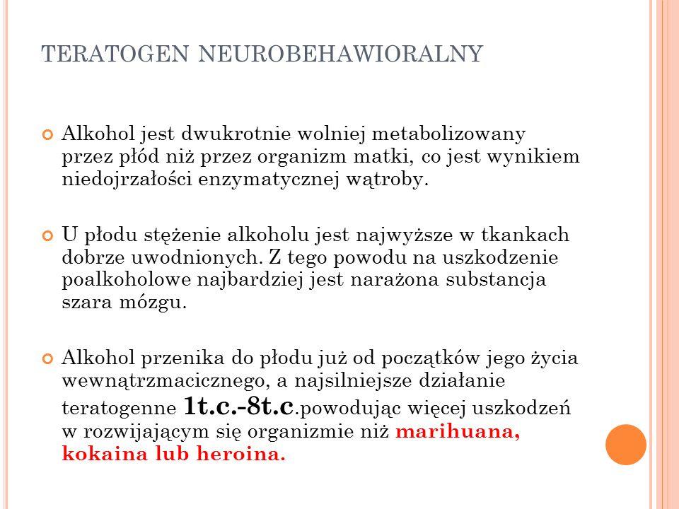 TERATOGEN NEUROBEHAWIORALNY Alkohol jest dwukrotnie wolniej metabolizowany przez płód niż przez organizm matki, co jest wynikiem niedojrzałości enzymatycznej wątroby.