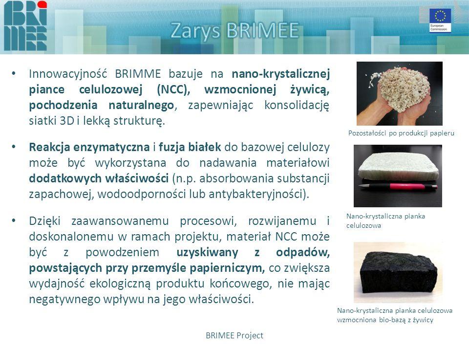 Chociaż rodzina produktów BRIMEE ma znaleźć zastosowanie jako zewnętrzne panele izolacyjne oraz wewnętrzne ściany działowe, zarówno w nowych, jak i w istniejących już budynkach, największym potencjalnym rynkiem będą budynki wybudowane przed 1975 i wymagające modernizacji BRIMEE Project