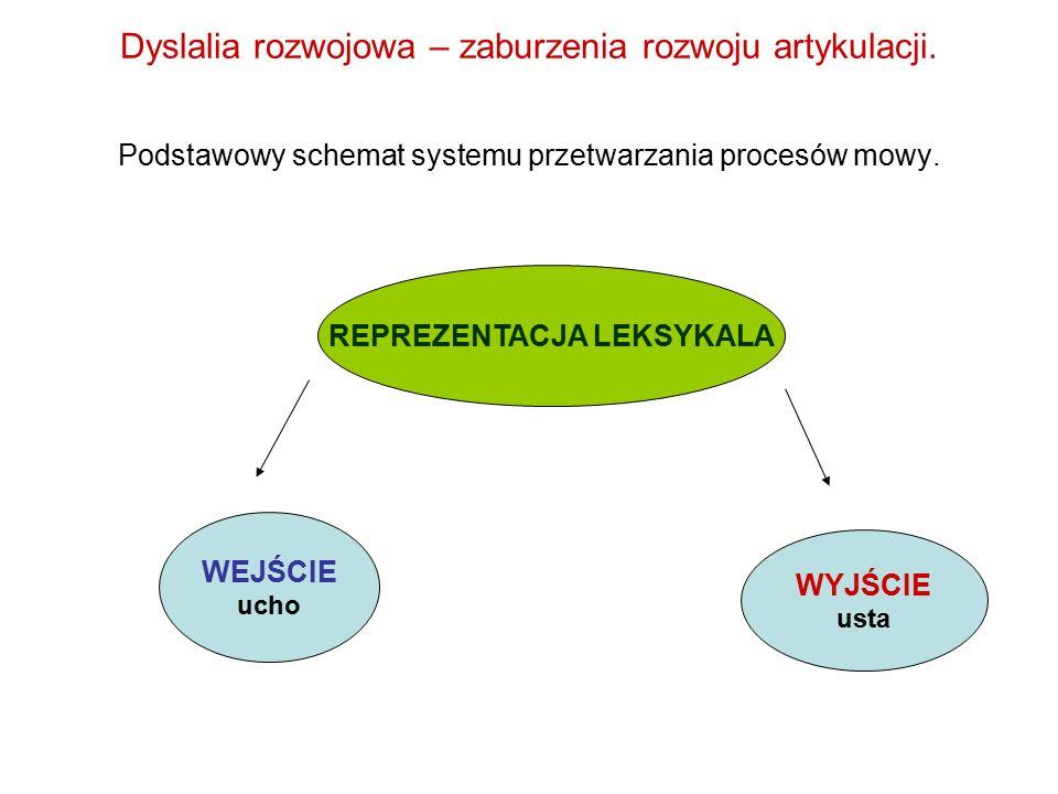 Dyslalia rozwojowa – zaburzenia rozwoju artykulacji. Podstawowy schemat systemu przetwarzania procesów mowy. REPREZENTACJA LEKSYKALA WEJŚCIE ucho WYJŚ