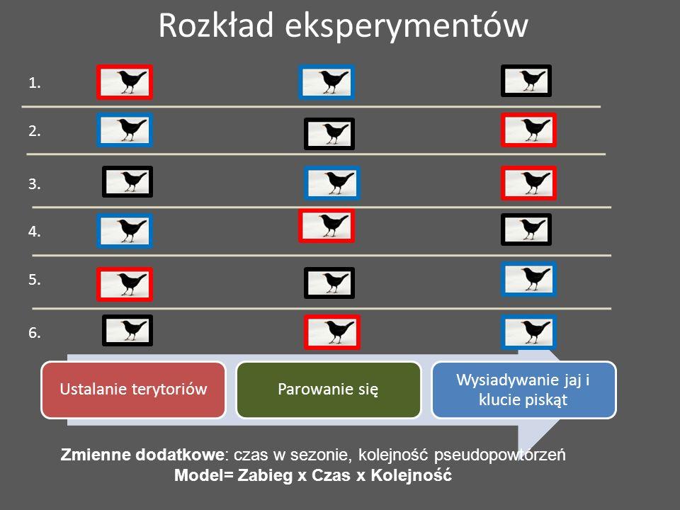 Rozkład eksperymentów Ustalanie terytoriówParowanie się Wysiadywanie jaj i klucie piskąt 1. 2. 3. 4. 5. 6. Zmienne dodatkowe: czas w sezonie, kolejnoś