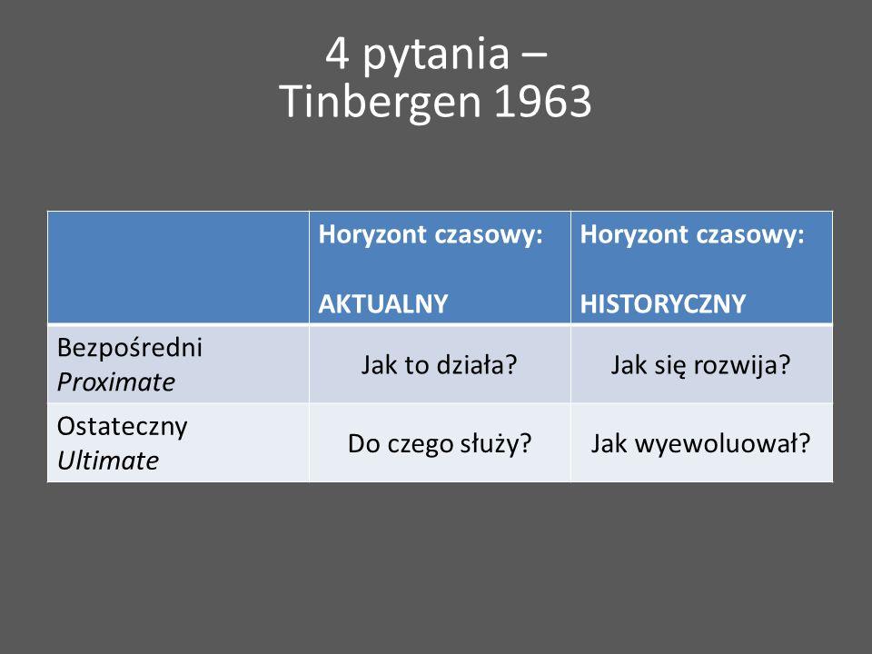 4 pytania – Tinbergen 1963 Horyzont czasowy: AKTUALNY Horyzont czasowy: HISTORYCZNY Bezpośredni Proximate Jak to działa?Jak się rozwija.