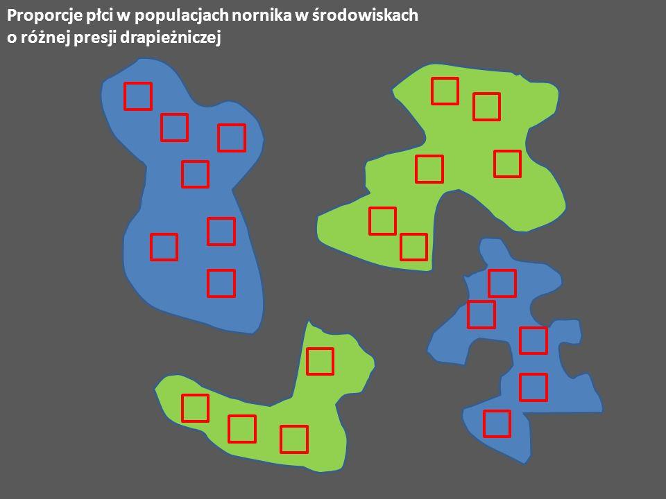Proporcje płci w populacjach nornika w środowiskach o różnej presji drapieżniczej