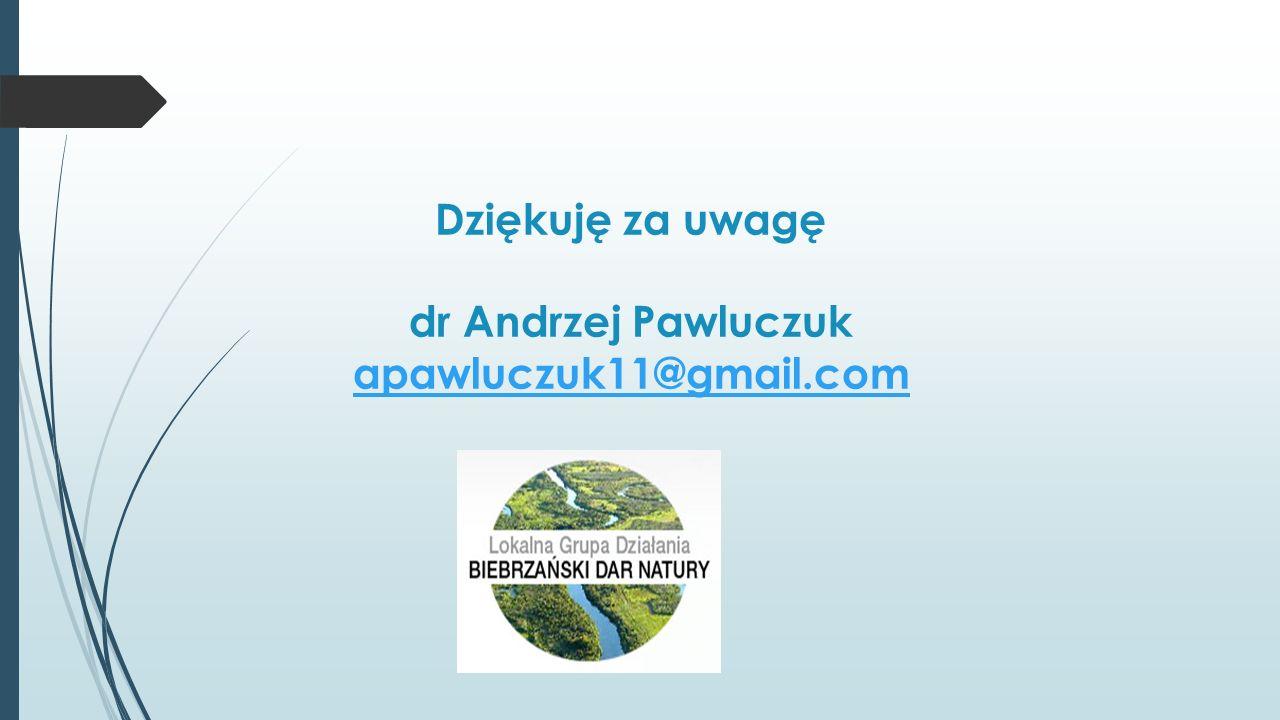Dziękuję za uwagę dr Andrzej Pawluczuk apawluczuk11@gmail.com apawluczuk11@gmail.com