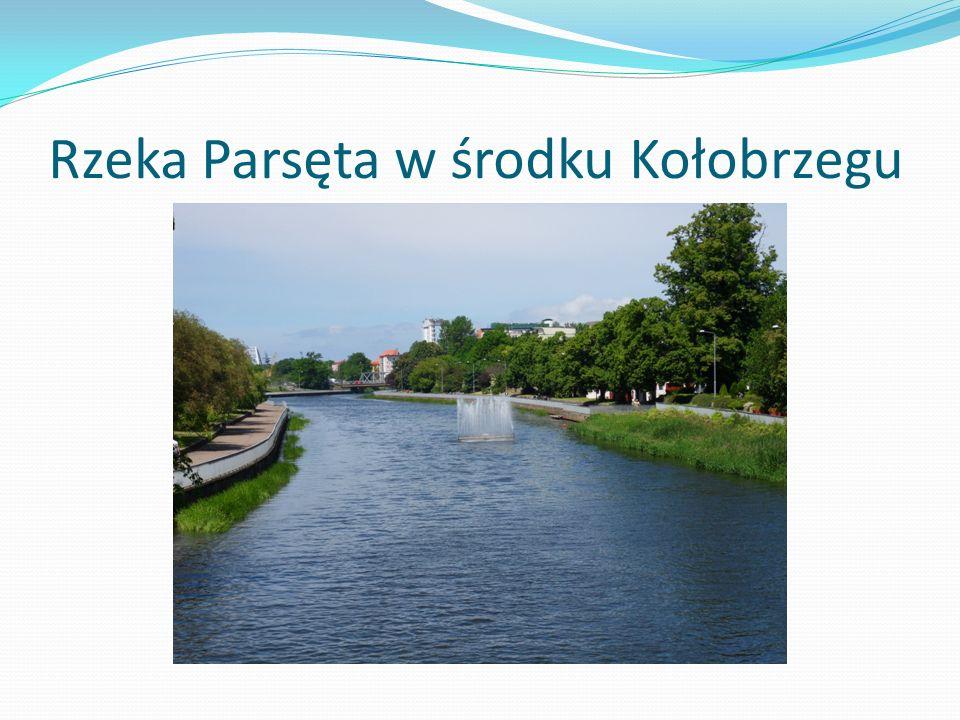 Rzeka Parsęta w środku Kołobrzegu