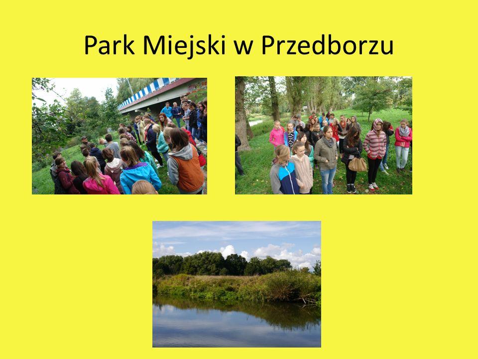 Park Miejski w Przedborzu