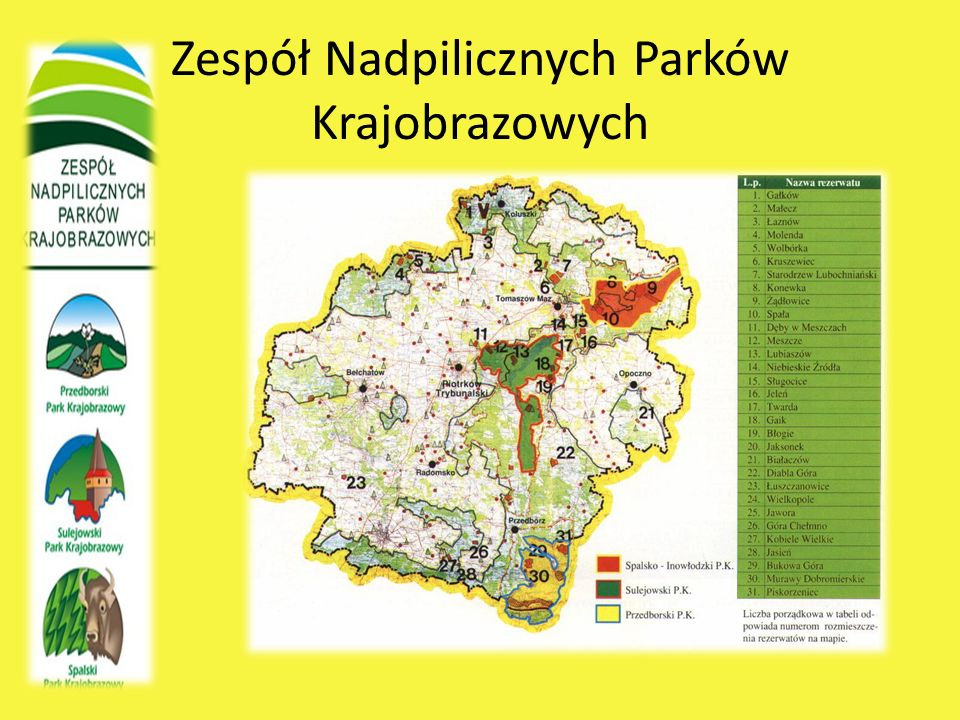 Zespół Nadpilicznych Parków Krajobrazowych