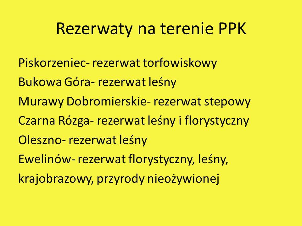 Rezerwaty na terenie PPK Piskorzeniec- rezerwat torfowiskowy Bukowa Góra- rezerwat leśny Murawy Dobromierskie- rezerwat stepowy Czarna Rózga- rezerwat