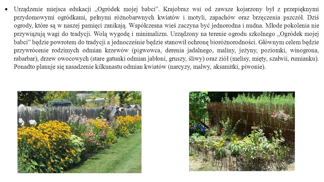 """ Urządzenie miejsca edukacji """"Ogródek mojej babci"""". Krajobraz wsi od zawsze kojarzony był z przepięknymi przydomowymi ogródkami, pełnymi różnobarwnyc"""