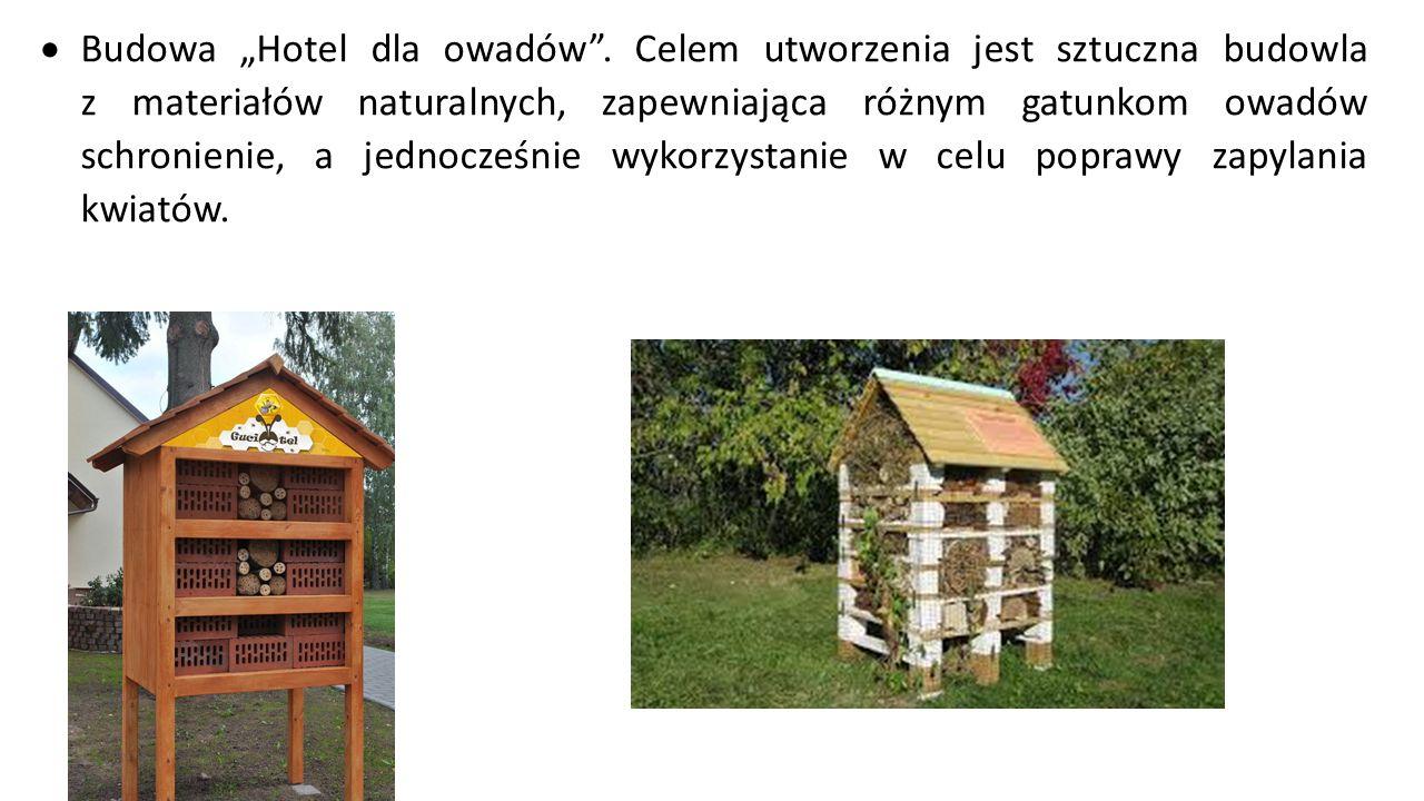 """ Budowa """"Hotel dla owadów"""". Celem utworzenia jest sztuczna budowla z materiałów naturalnych, zapewniająca różnym gatunkom owadów schronienie, a jedno"""