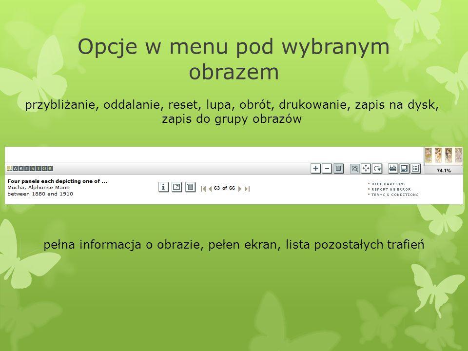 Opcje w menu pod wybranym obrazem przybliżanie, oddalanie, reset, lupa, obrót, drukowanie, zapis na dysk, zapis do grupy obrazów pełna informacja o ob