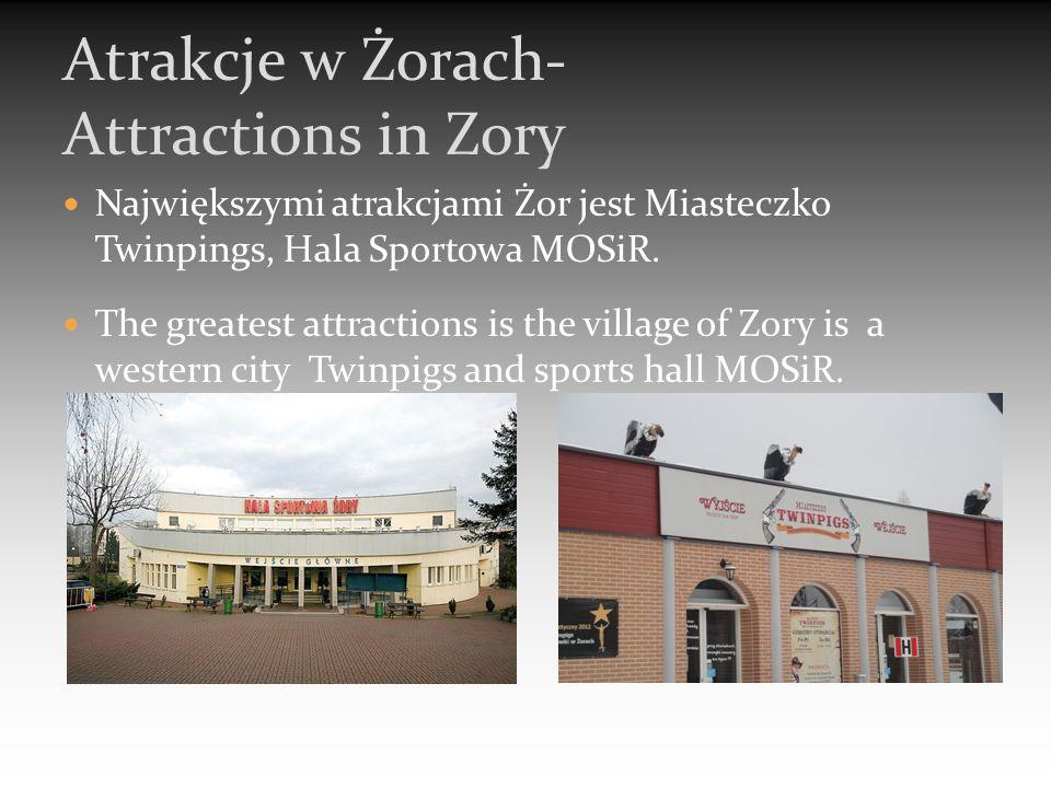 Największymi atrakcjami Żor jest Miasteczko Twinpings, Hala Sportowa MOSiR.