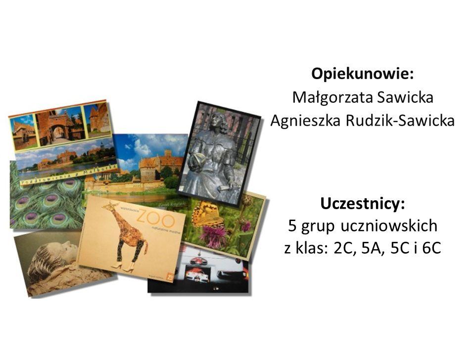Opiekunowie: Małgorzata Sawicka Agnieszka Rudzik-Sawicka Uczestnicy: 5 grup uczniowskich z klas: 2C, 5A, 5C i 6C