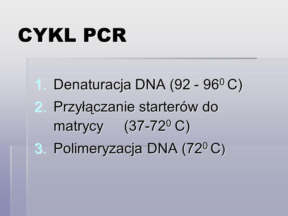 CYKL PCR 1.Denaturacja DNA (92 - 96 0 C) 2.Przyłączanie starterów do matrycy (37-72 0 C) 3.Polimeryzacja DNA (72 0 C )