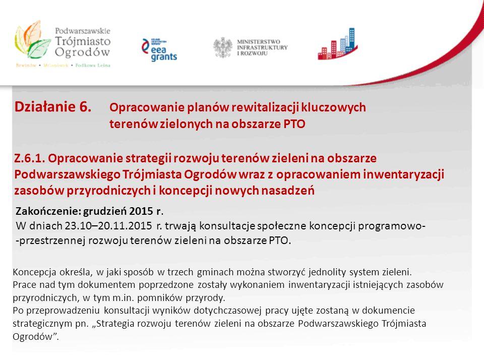 Działanie 6. Opracowanie planów rewitalizacji kluczowych terenów zielonych na obszarze PTO Z.6.1.
