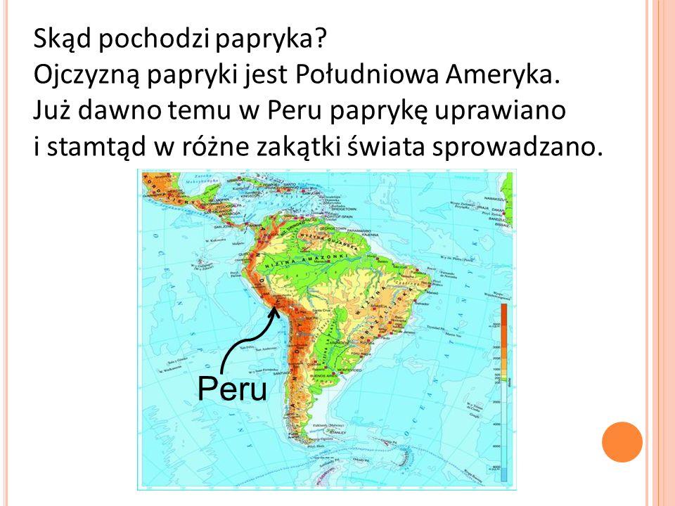 Skąd pochodzi papryka? Ojczyzną papryki jest Południowa Ameryka. Już dawno temu w Peru paprykę uprawiano i stamtąd w różne zakątki świata sprowadzano.