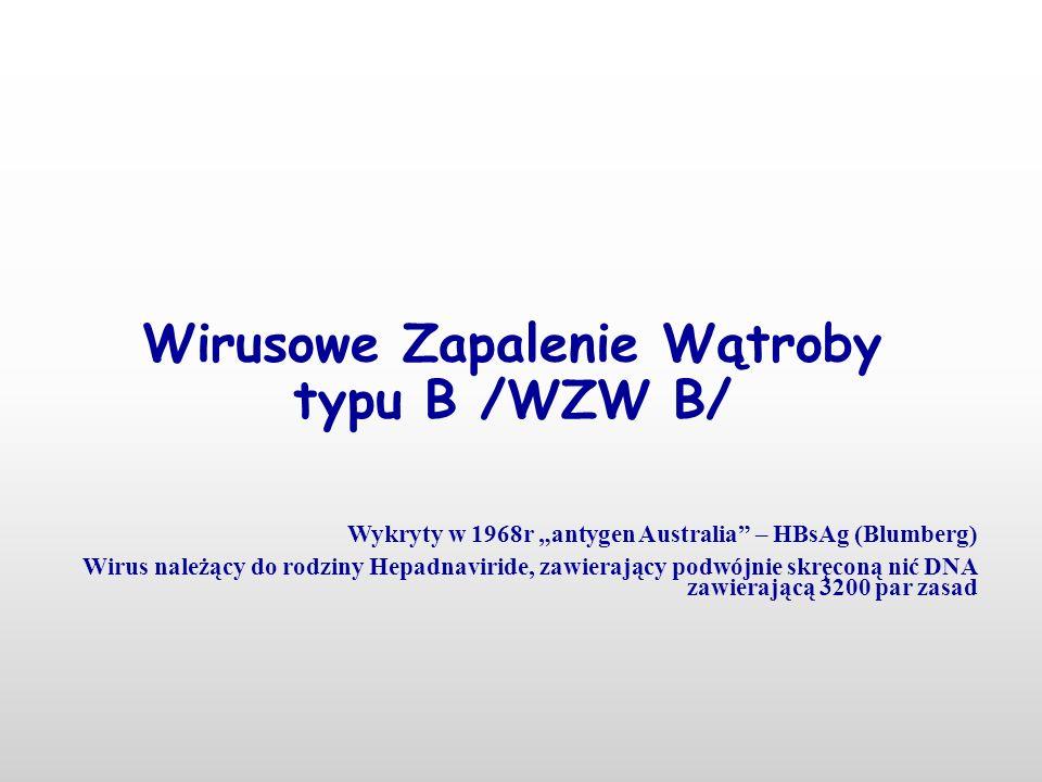 """Wirusowe Zapalenie Wątroby typu B /WZW B/ Wykryty w 1968r """"antygen Australia – HBsAg (Blumberg) Wirus należący do rodziny Hepadnaviride, zawierający podwójnie skręconą nić DNA zawierającą 3200 par zasad"""