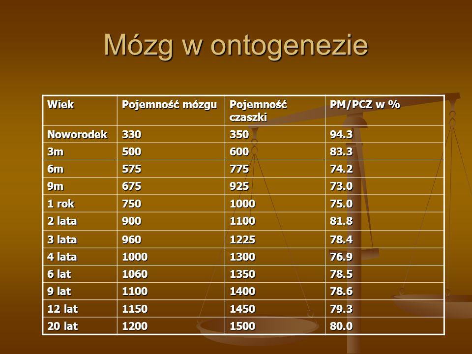 Mózg w ontogenezie Wiek Pojemność mózgu Pojemność czaszki PM/PCZ w % Noworodek33035094.3 3m50060083.3 6m57577574.2 9m67592573.0 1 rok 750100075.0 2 la